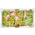 box uva visto dall'alto
