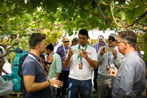 visitatori dell'Ottavo Simposio Internazionale dell'Uva da Tavola ascoltano la guida